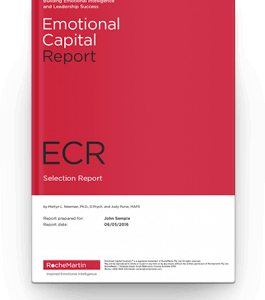 emotional capital report